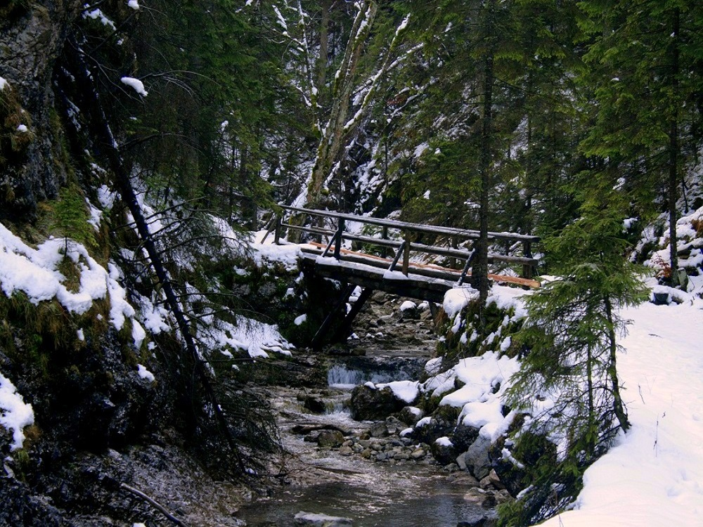 Białego Valley – winter walking in the Tatra Mountains